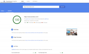 100 Google Page Speed Insights
